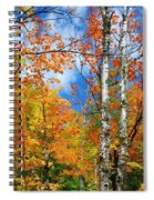 Minnesota Autumn Foliage Spiral Notebook