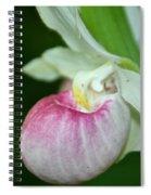 Minnesota's Lady Slipper Spiral Notebook