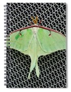 Mint Green Luna Moth Spiral Notebook