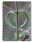 Mint Heart Spiral Notebook
