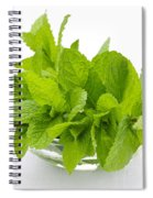 Mint Sprigs In Bowl Spiral Notebook