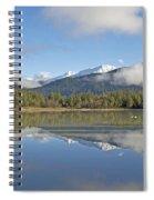Mirror Spiral Notebook