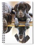 Mirror Mirro Spiral Notebook
