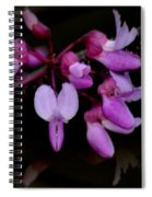Mirrored Redbuds Spiral Notebook