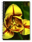 Mirrored Tulip Time Spiral Notebook