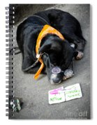 Miss Darlin' Of Royal St Nola Spiral Notebook