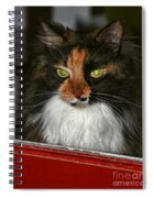 Miss Gizzie Waits By Diana Sainz Spiral Notebook
