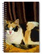 Miss Tillie On A Pillow Bright Spiral Notebook