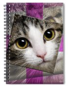 Miss Tilly The Gift 3 Spiral Notebook