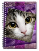 Miss Tilly The Gift 4 Spiral Notebook