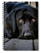 Miss You So Much Spiral Notebook