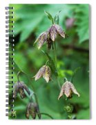Mission Bells  Fritillaria  Grow Spiral Notebook