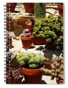 Mission Cactus Garden Spiral Notebook