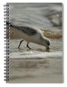 Mission Complete Spiral Notebook