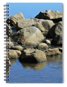 Mississippi Headwaters Spiral Notebook