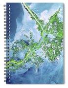 Mississippi River Delta Spiral Notebook