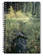 Mississippi River Headwaters Spiral Notebook