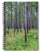 Mississippi Woods Spiral Notebook