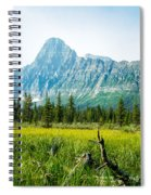 Mistaya River Valley And Mountain Range Spiral Notebook