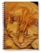 Mister Morris Spiral Notebook