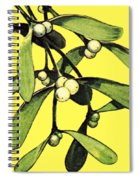 Mistletoe Spiral Notebook