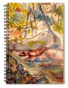 Misty Cascades Day Spiral Notebook