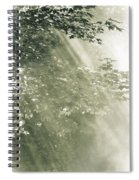 Misty Forest Spiral Notebook