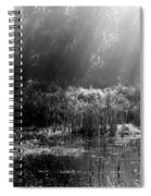 Misty Marsh - Black And White Spiral Notebook