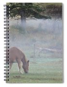 Misty Meadow Spiral Notebook
