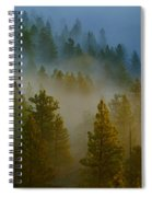 Misty Morning In The Pines Spiral Notebook