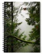 Misty Mossy Morning Spiral Notebook