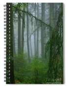 Misty Woodland Spiral Notebook