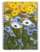 Mixed Daisies Spiral Notebook