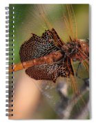 Mocha And Cream Dragonfly Profile Spiral Notebook