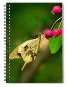 Mocker Swallowtail Butterfly And Berries Spiral Notebook