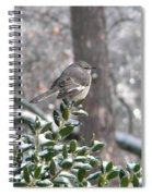 Mockingbird Cold Spiral Notebook