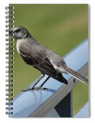 Mockingbird Perched Spiral Notebook