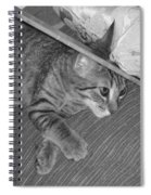 Model Kitten Spiral Notebook