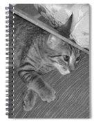 Model Kitten Spiral Notebook