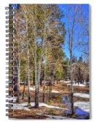 Mogollon Spring 1 Spiral Notebook