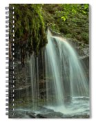 Mohawk Streams And Roots Spiral Notebook