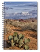 Mojave Desert Cactus Spiral Notebook