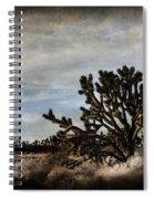 Mojave Desert Joshua Tree In Cima Spiral Notebook