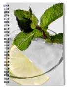 Mojito Detail Spiral Notebook