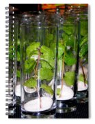 Mojitos In The Making Spiral Notebook