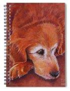 Mollie Spiral Notebook