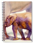 Mom And Baby Boy Elephants Spiral Notebook