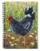 Mom And Chicks Spiral Notebook