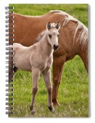 Mom And Foal Spiral Notebook