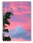 Momentary Magnificence Spiral Notebook